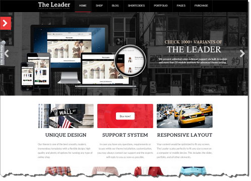 wordpress-the-leader.png