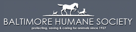 Baltimore-Humane-Society.png