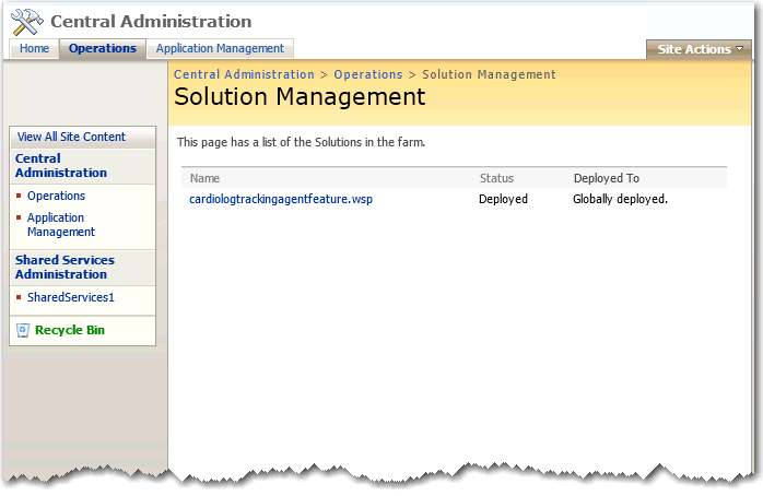Solution_Management-2007.png